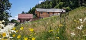 Ferienhäuser Gerhart - Haus im Ennstal